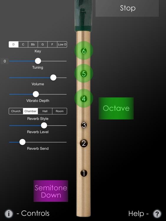 Tin Whistle Pro screenshot-0
