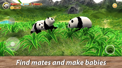 Panda Family Simulator screenshot 3