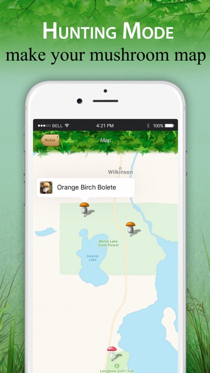 Mushroom Identifier and Guide screenshot-4