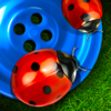 Snap Two Studio, LLC - Bugs and Buttons  artwork