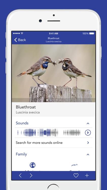 iKnow Birds LITE - USA