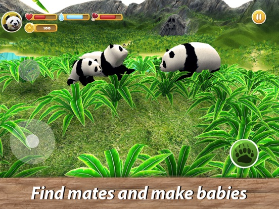 Panda Family Simulator screenshot 7