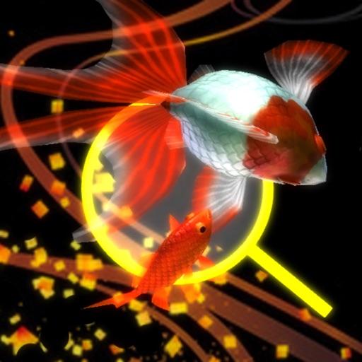 金魚ドリーム