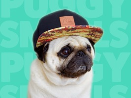Puggy Smalls Stickers