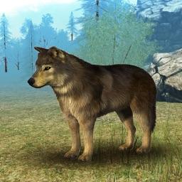 Wild Wolf Simulator 3D Runner