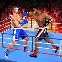 Real Boxing Champion Heroes