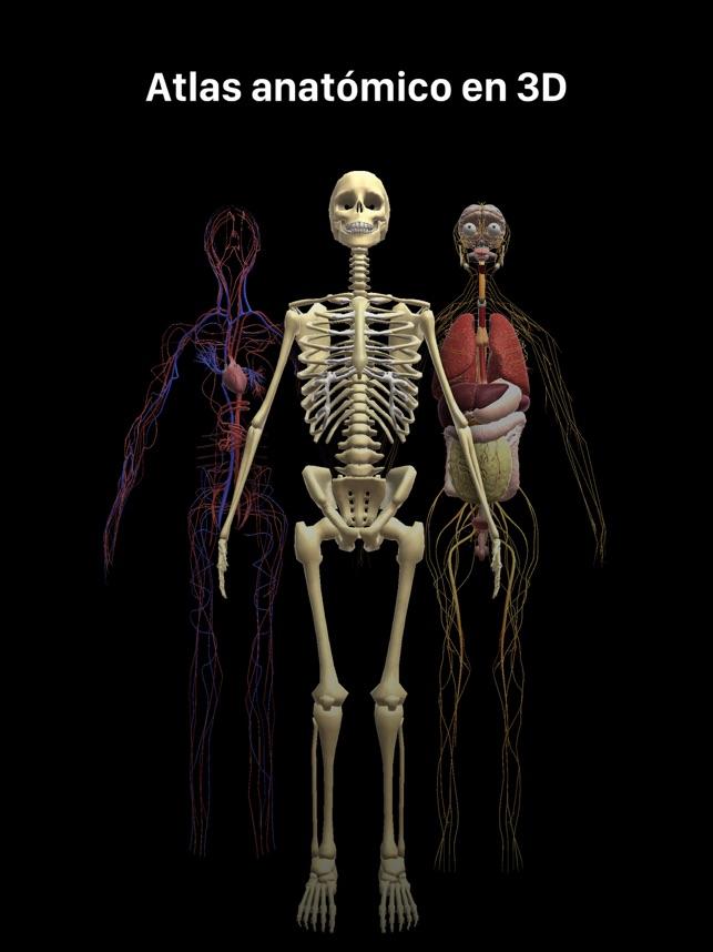 Anatomia RA: Cuerpo Humano en App Store
