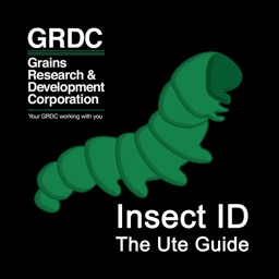 Insect ID: The Ute Guide