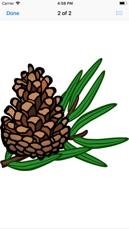 Pine Cone Stickers screenshot-2