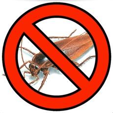 Activities of Cockroach Bug Smasher