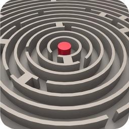 Maze Runner:3D Escape Plan
