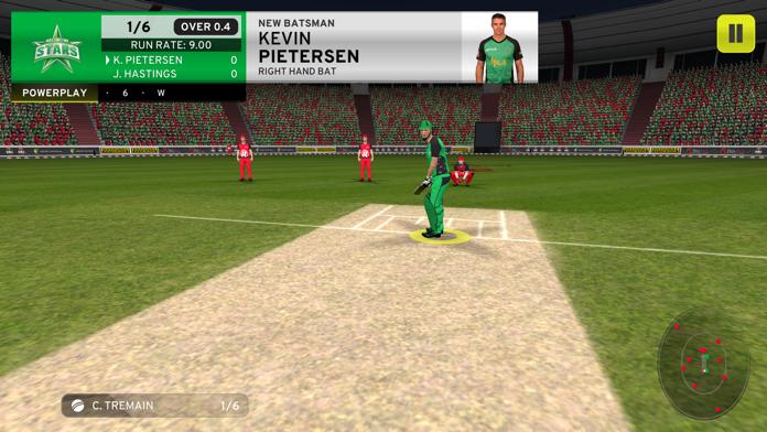 Big Bash Cricket Screenshot
