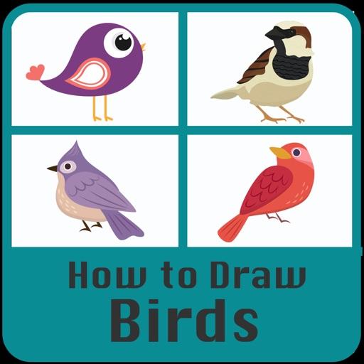 How to draw Birds Step by step
