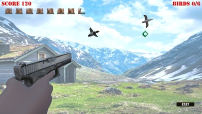 Wild Bird Hunter America screenshot 4