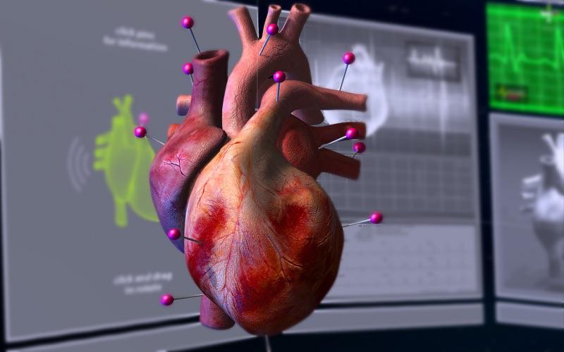 AnimatedBeatHeart скриншот программы 2