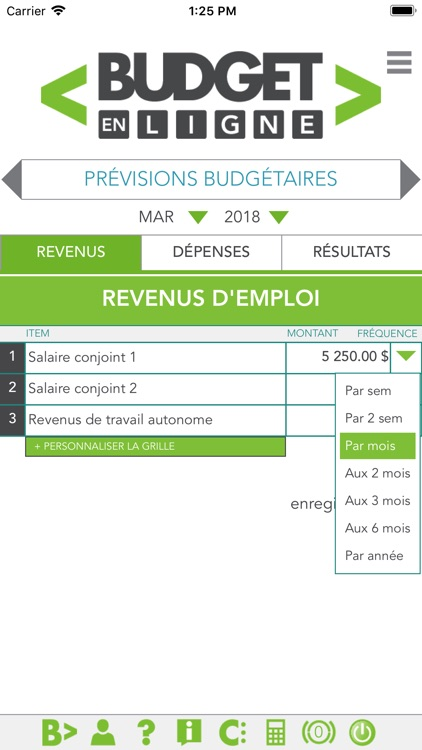 Budget en ligne screenshot-1