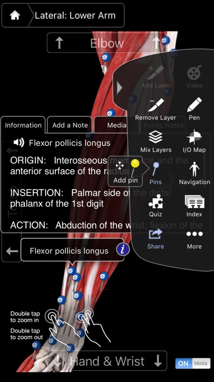 Muscle System Pro III - iPhone screenshot-3