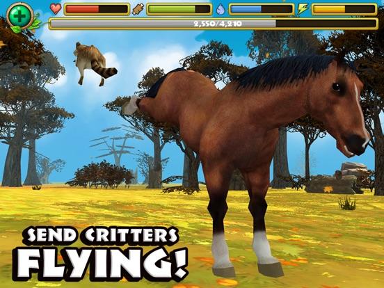 Игра Wild Horse Simulator