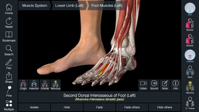 Screenshot for Essential Anatomy 5 in Denmark App Store