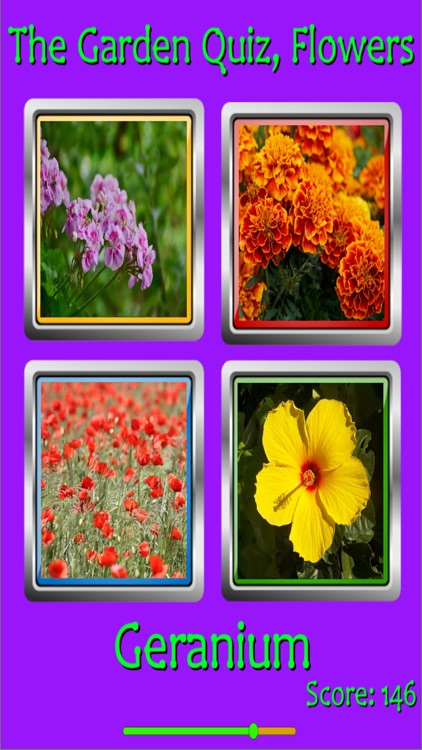 The Garden Quiz: Flowers