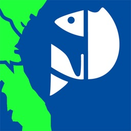 SA Fishing Regulations