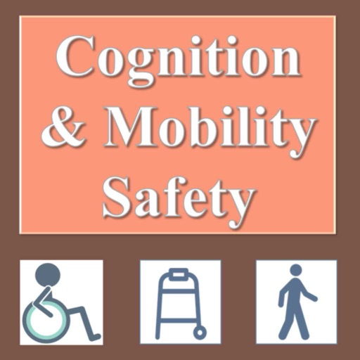 Cognition & Mobility Safety