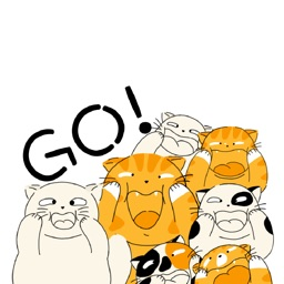 Go! Cats - Animated Stickers