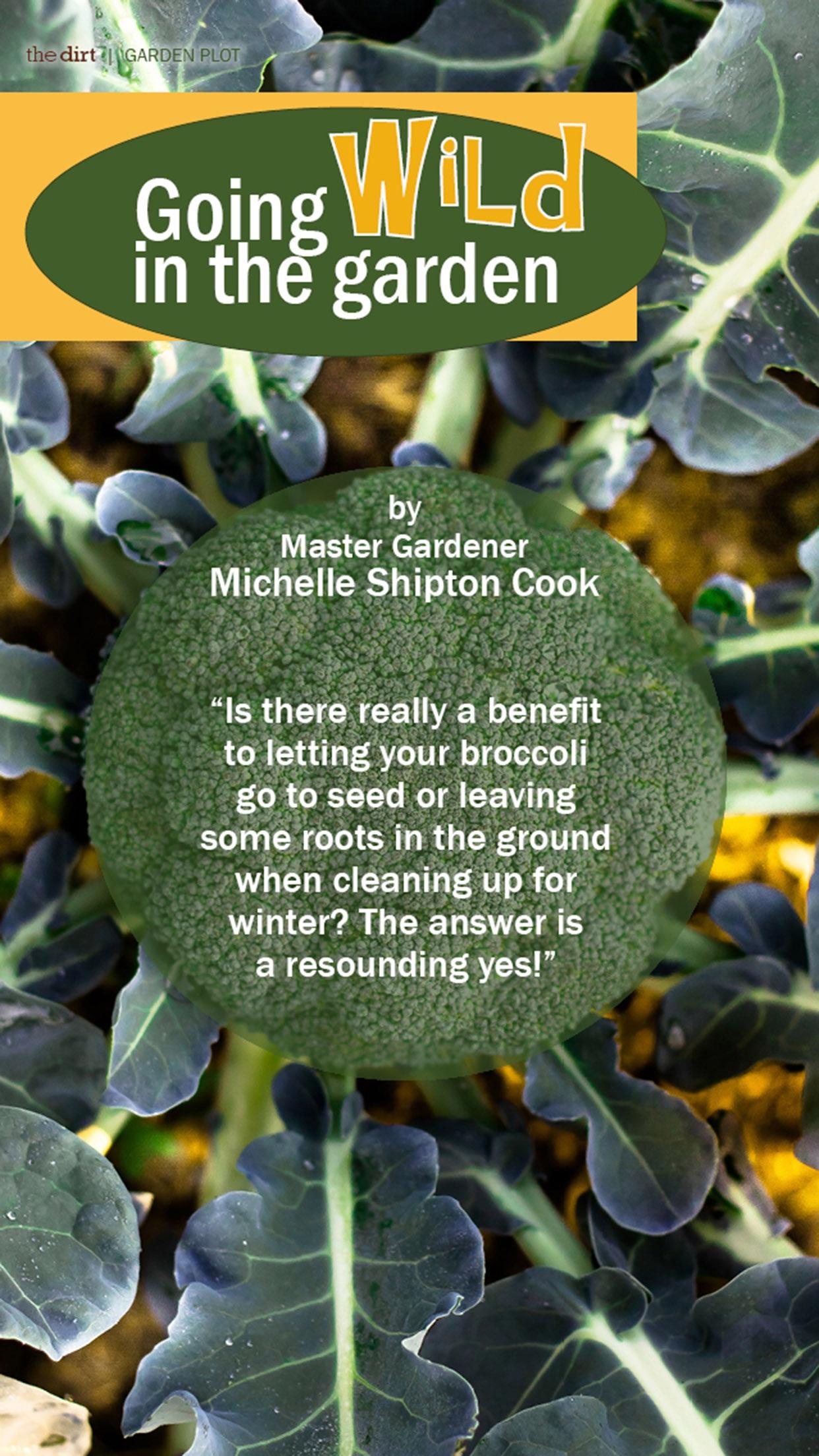 The Dirt on Organic Gardening Magazine Screenshot