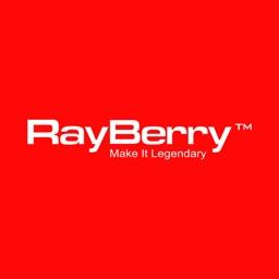 RayberryVue