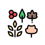 Thanksgiving 2019 Stickers