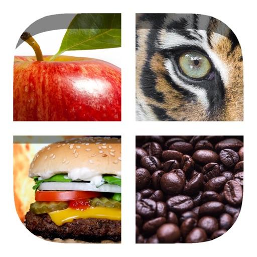 Close Up Pics 2 - Fun Trivia Quiz