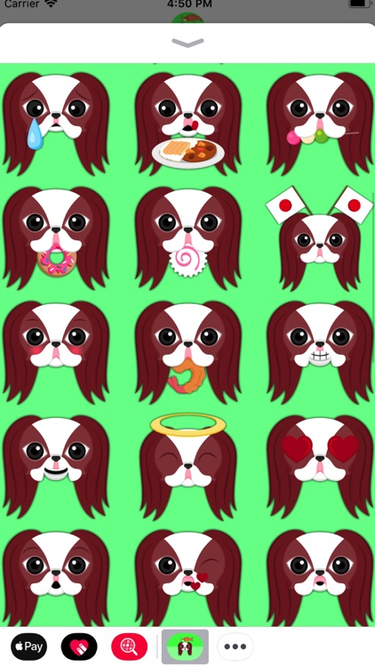 Red Sable Japanese Chin screenshot-3