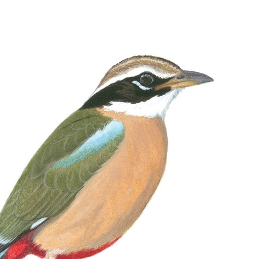 eGuide to Birds of the Indian Subcontinent iOS App