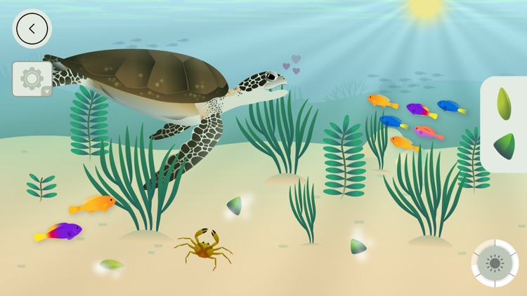 Coral Reef by Tinybop screenshot-4
