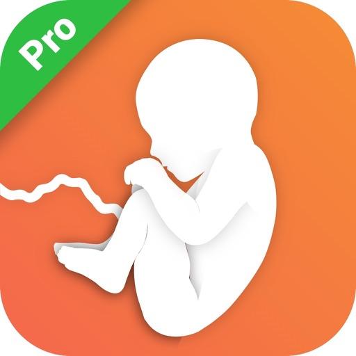 Pregnancy Mentor Pro