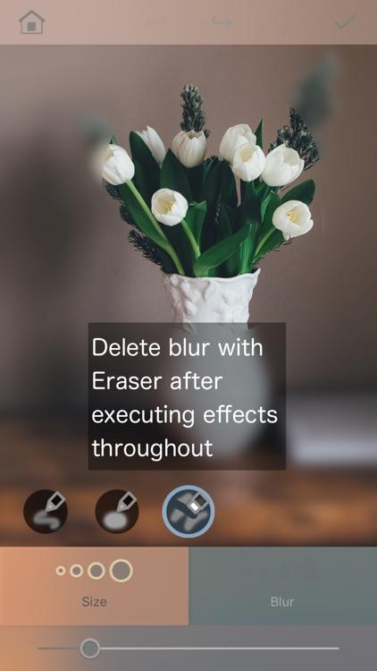 Bokasoon - Blur Background & Hide Face with  Blur screenshot-3