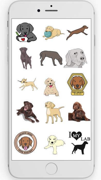 Labrador Retriever Stickers screenshot three