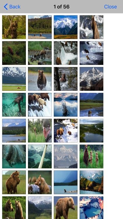 Voyageurs -National Park screenshot-4