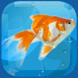 AquaLife 3D
