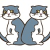 猫のまちがいさがしアイコン