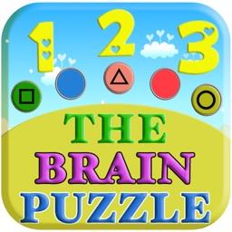 The Brain Puzzle