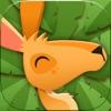 KangaRuun - iPhoneアプリ