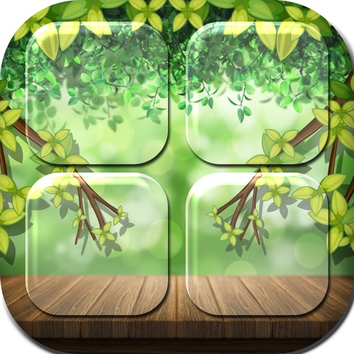 Shelf Background Maker in Natural Design Pro iOS App