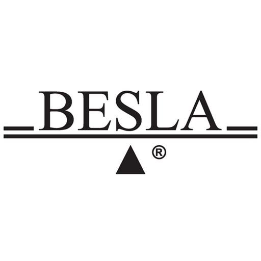 BESLA, Inc.