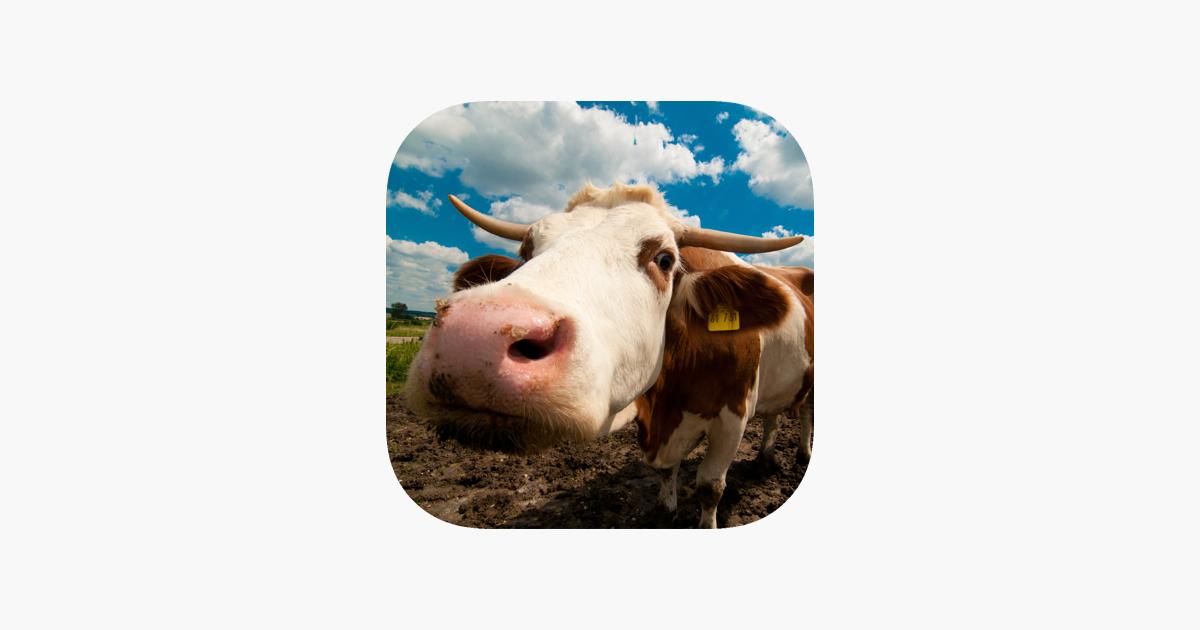 Farm Animal Sounds & Noises on the App Store