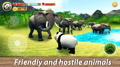 Panda Family Simulator screenshot 2
