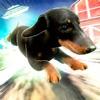 Hero Patrol: Puppy Farm Reviews