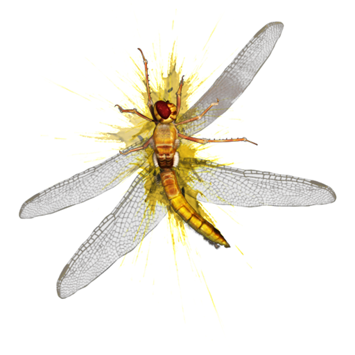 Flying Bug Smasher