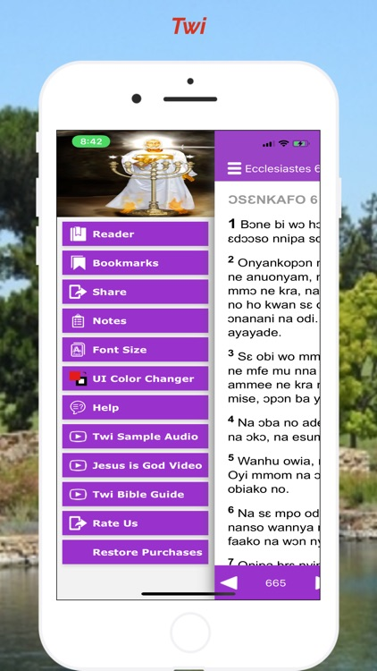 Twi Bible Akuapem screenshot-3