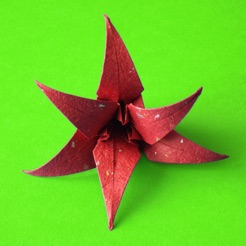 Origami flowers on the app store origami flowers 4 mightylinksfo